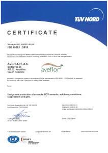 Certificate 18001 2015 EN